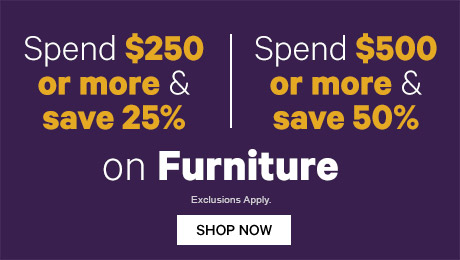 Spend $250 or more & save 25% on Furniture