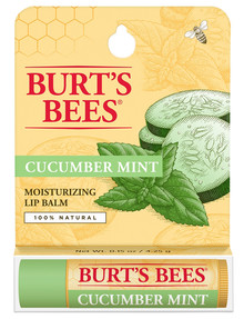 Burts Bees Cucumber Mint Lip Balm product photo