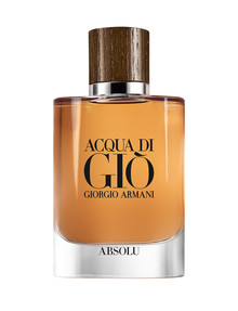 Armani Acqua Di Gio Absolu EDP product photo