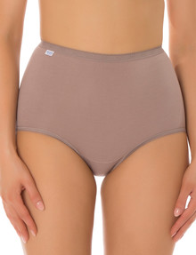 Sloggi 2PK Maxi Brief, Pink/Brown product photo