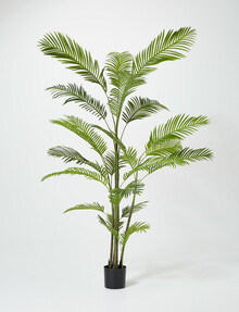 Tilly@home Artificial Plant, Palm, XL, 240cm product photo