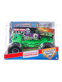 Hot Wheels Monster Truck 1:24 Remote Control, Assorted product photo