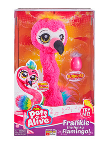 Pets Alive Frankie the Funky Flamingo product photo