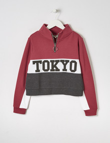 Switch Colour-Block 1/4 Zip Sweatshirt, Dark Rose, White & Charcoal product photo