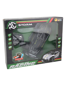 Remote Control Storm 1:12 Car with Rechargeable Battery product photo