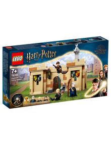 Lego Harry Potter Hogwarts: First Flying Lesson, 76395 product photo